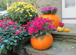 pumpkin_planter_DIY_2