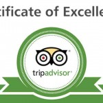 Tripadvisor recommended business